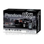 PANDORA DXL 3100 CAN фото