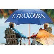 Страховые услуги фото