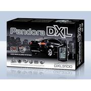 Pandora DXL 3100 фото