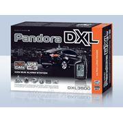 Pandora DXL 3500 фото