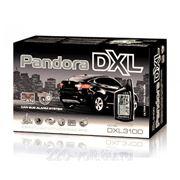 Сигнализация Pandora De luxe 3100 can фото