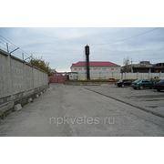 фото предложения ID 355211