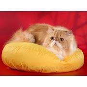Лежанка для кошек и собак круглая, нейлон фото