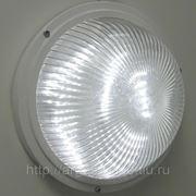 Антивандальный светильник ЖКХ 005 LED 17Вт Аргос фото