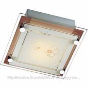 Светильник Sonex BOXA настенно-потолочный фото