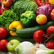 Услуги по таможенному оформлению фруктов и овощей (экспорт, реэкспорт), производство столового винограда сорта Молдова Подробнее: http://8879.md.all.biz/ фотография