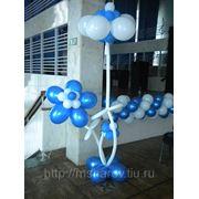 фото предложения ID 356033