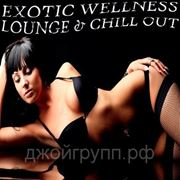 VA - Exotic Wellness Lounge And Chill Out (2013) фото