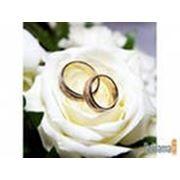 фото предложения ID 356623