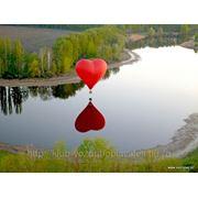 фото предложения ID 356727