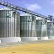 Силосы зерновые фото
