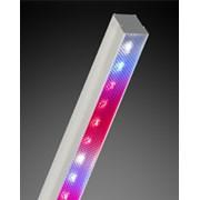 """Светодиодная фитолампа LED СКУ01 """"Fito"""" 50w фото"""