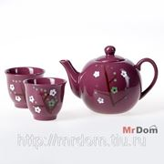 Набор для чая 5 пр. (837047) фото