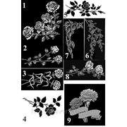 Каталог цветы фото