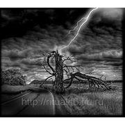 Графика 03 дерево-молния фото