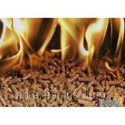 Бизнес план топливных пеллет фото