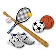 Бизнес план спортивно-озворовительного комплекса, сауны фото