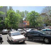 Бигборды Херсон, ул.Маяковского-проспект Ушакова,центр.сторона А,3х4м фото