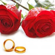 Ведущая свадеб. фото