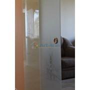 Дизайнерская дверь на заказ фото