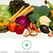 Сельскохозяйственные продукты фото
