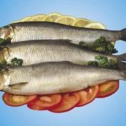 Рыба пряного посола фото