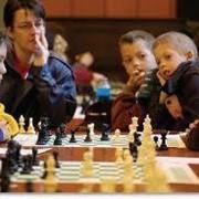 Шахматные секции – лучшее решение для развития ребенка фото