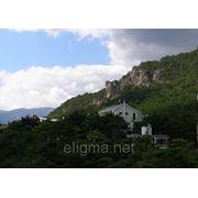 Аренда дома в Крыму;снять дом в Ялте фото