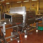 Мини-заводы, цеха и линии переработки мяса, рыбы, молока и плодоовощной промышленности фото