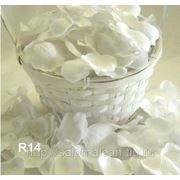 Лепестки роз для свадьбы фото