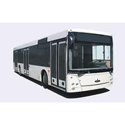 Автобус городской МАЗ 203 фото