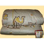 Одеяло верблюжья шерсть (verbi) фото