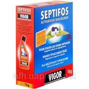 Порошок для выгребных ям Septifos Vigor (Франция) фото