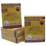 Биопрепарат Kalius бактерии для выгребных ям 200 грамм Харьков фото