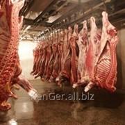 Убойные цеха от 5 тонн до 30 тонн в сутки фото