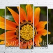 Модульна картина на полотні Помаранчева квітка код КМ100150(132)-015 фото