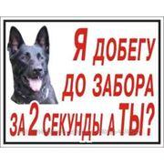 фото предложения ID 3673054