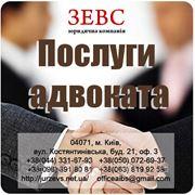 фото предложения ID 3679151