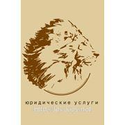Представительство интересов в Соломинском рйн суде фото