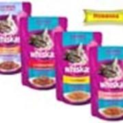 Корм для котов Вкусный обед сочные кусочки от Whiskas фото