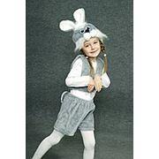 Заяц серый фото
