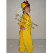 Карнавальный костюм Цыпленок для мальчика фото