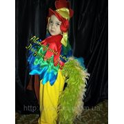 Карнавальный костюм Петушок для мальчика. фото