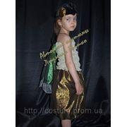 Карнавальный костюм Муха-Цокотуха фото