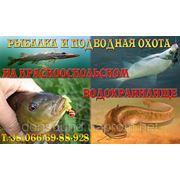 фото предложения ID 3687880