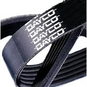 Ремень поликлиновый Dayco 3PK910 фото