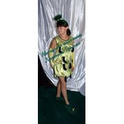Карнавальный костюм Гусеница фото