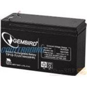 Аккумулятор для ИБП GEMBIRD BAT-12V7AH фото