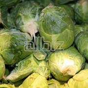 Хранение овощей фото