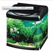 Маленькие аквариумы фото